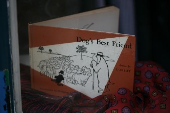 dogsbestfriend