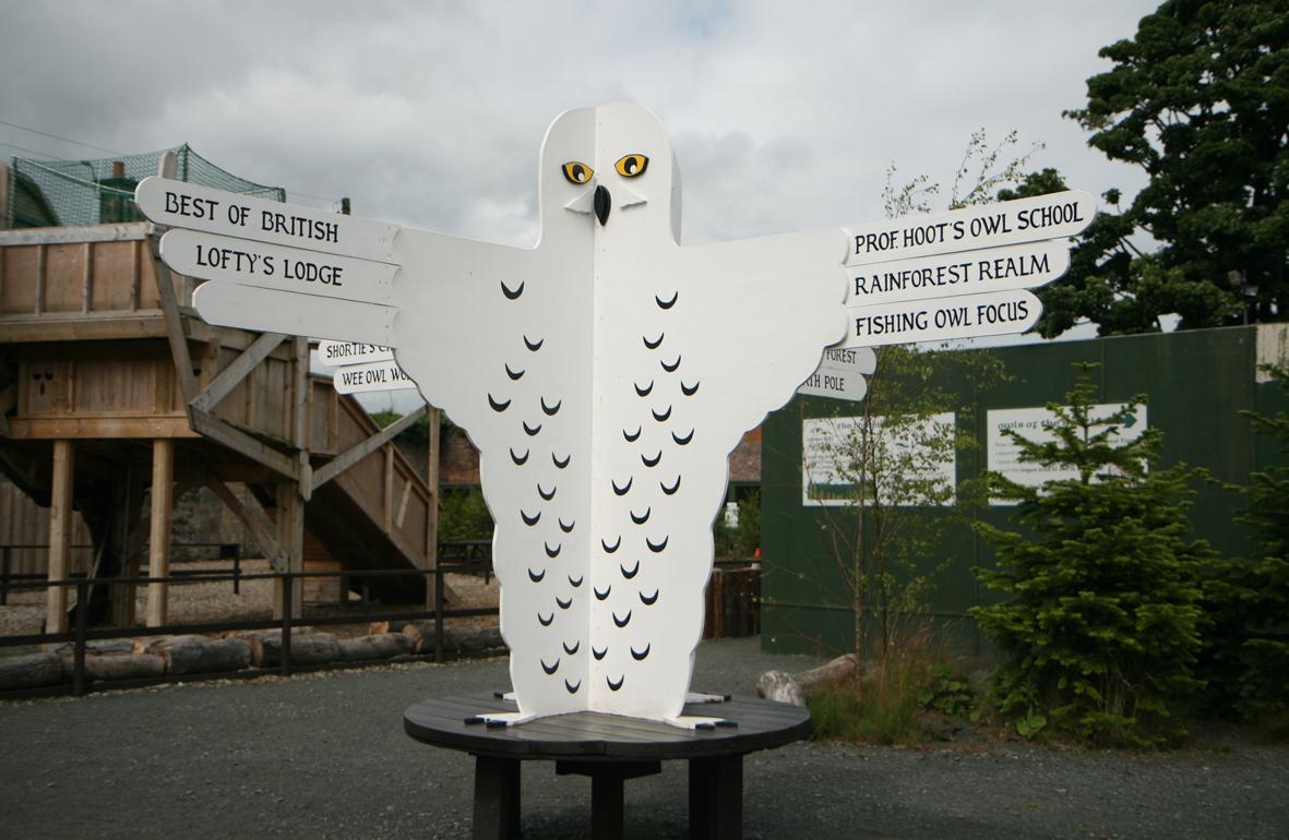 owldirections