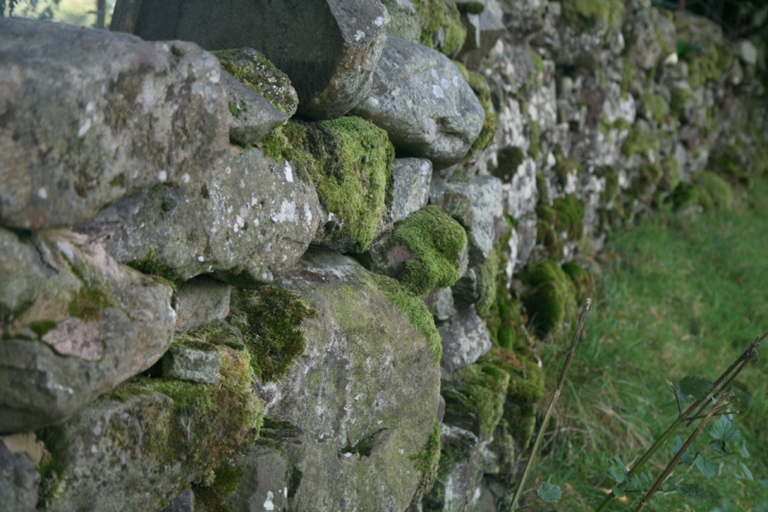 oldwall
