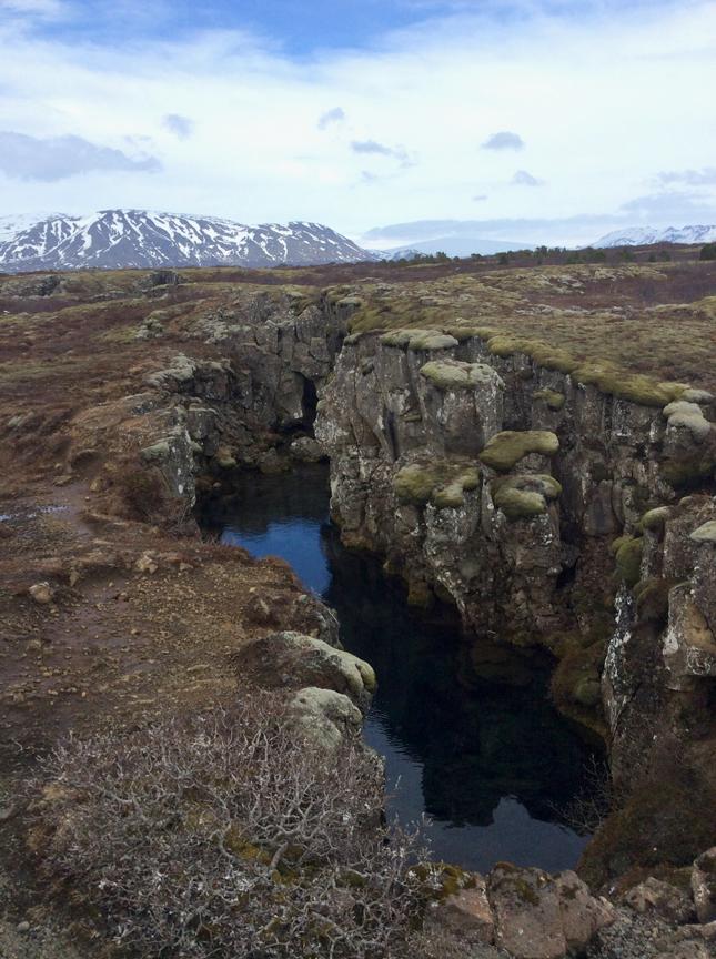 Þingvellirrift