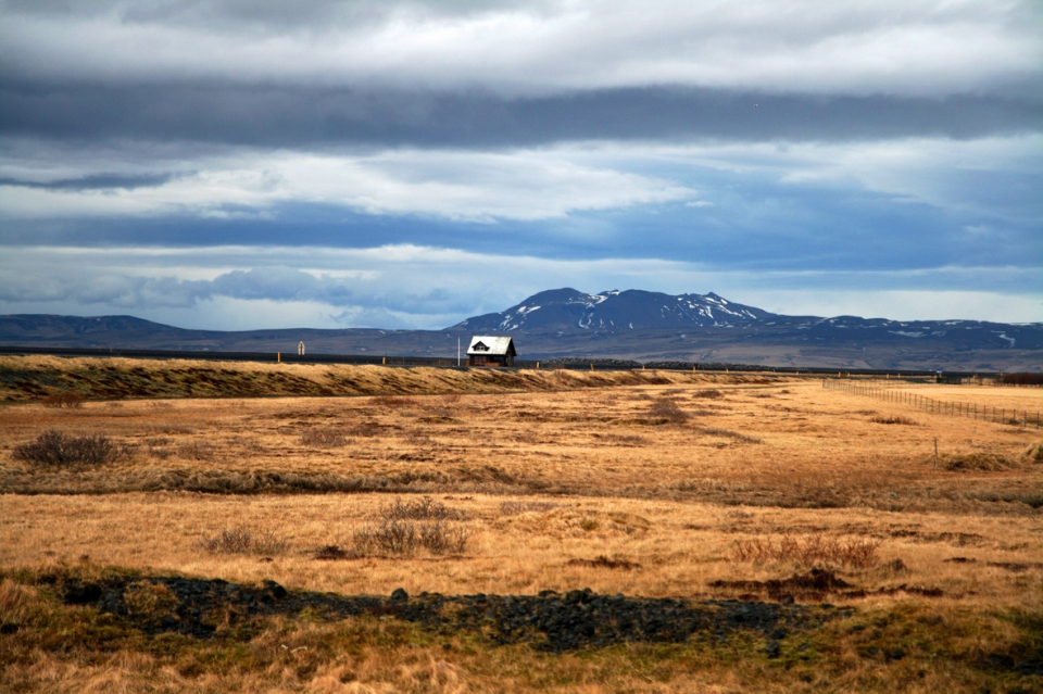 nearskogar1