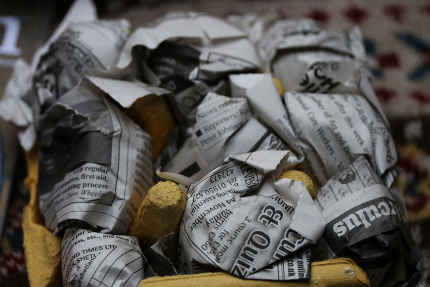 tatties