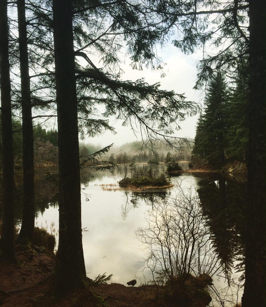 lochardforest