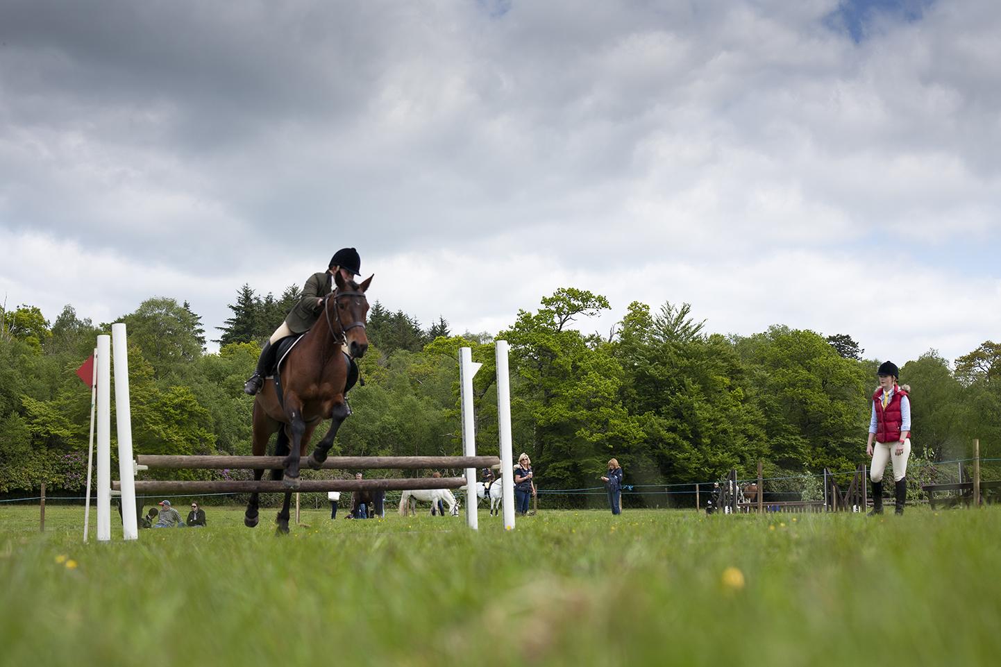 Horse jump copy