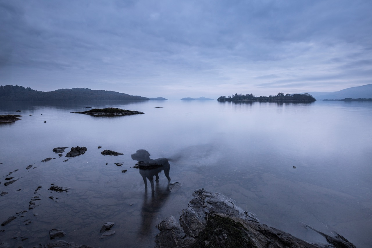 lochlomond-ghost-dog-copy